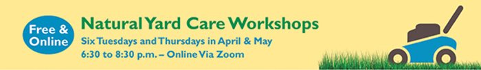 Snohomish County Hosts Natural Yard Care Educational Workshops