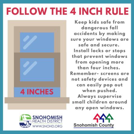 Kids and windows risk flyer