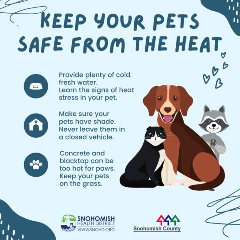 Pets and heat graphic