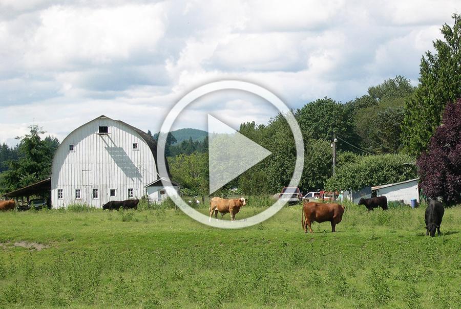 CFS Presentation - Landowner Incentives