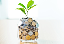 Jar of money with plant growing out of it