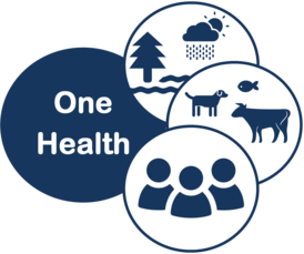 One Health Icons