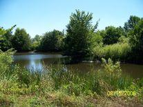 Storm Pond