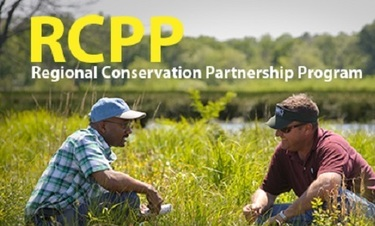 RCPP Grant Program