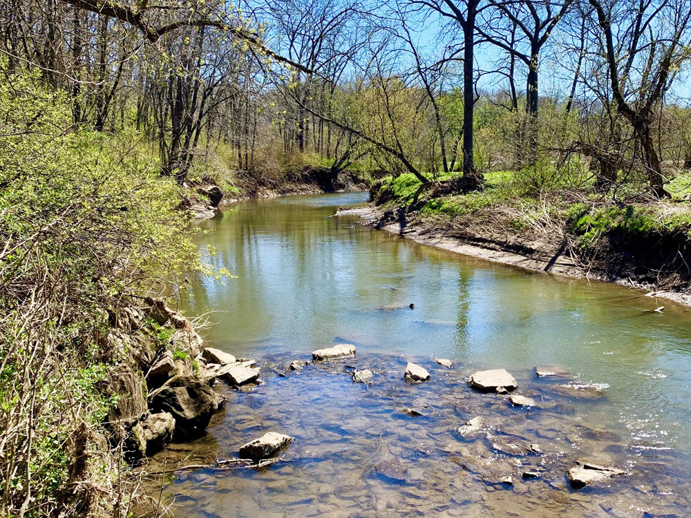 The Pecatonica River running through the Pecatonica River Woods State Natural Area