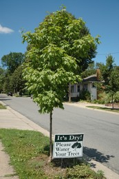 Please Water Your Trees sign