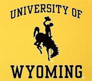 UW yellow logo