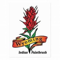 Logo of Indian Paintbrush plant with the words Wyoming Indian Paintbrush at the bottom