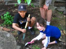 Young children gardening