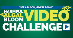 See it bloom, give it room logo for Environmental Protection Agency contest