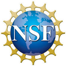 National Science Foundation logo showing the letters N,S and F