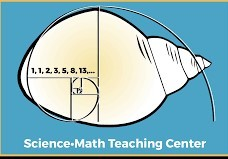Logo for UW Math and Science Teaching Center