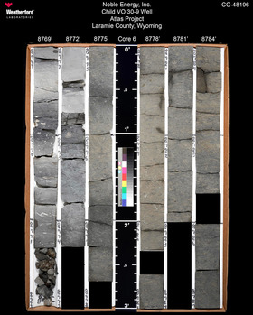 Photo from the USGS' core repository of the Codell Sandstone, starting at 8,873 ft.